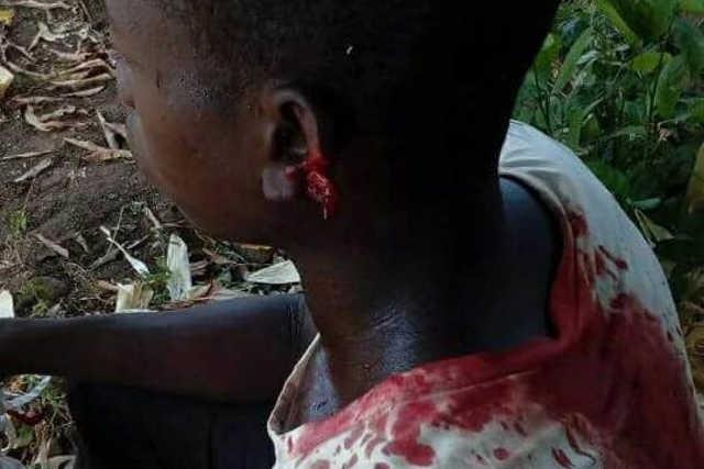 Togo, Début de Génocide à Bafilo, Mango et Tchaoudjo : Un an déjà!
