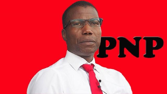 Togo : Le PNP balaie du revers de la main la raillerie faite à son leader