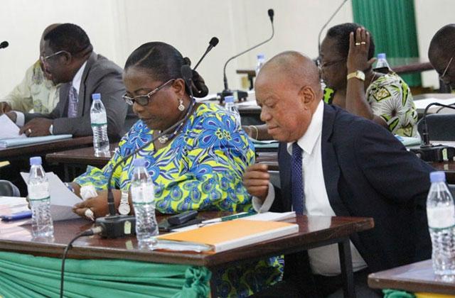 Affaire Bolloré: Question d'actualité au gouvernement par la Députée AMEGANVI Manavi Isabelle