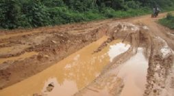 Tronçon Badou-Kpété-Bèna : Route du cacao, route de calvaire