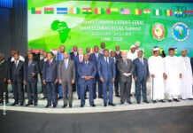 Les charognards de la CEDEAO et de l'Afrique centrale | Photo : DR